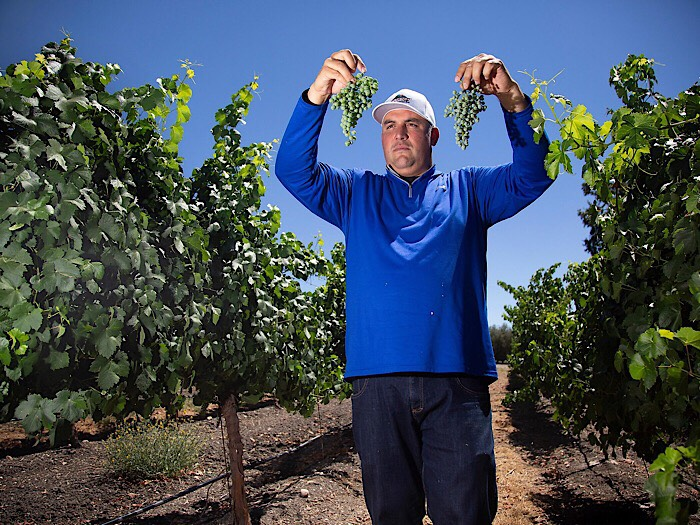 Andrew Jones - Field Recordings • Paso Robles, California  Field Recordings is 35-year old winemaker Andrew Jones' personal catalog of the people and places he values most. Spending his days as a vine nursery fieldman planning and planting vineyards for farmers all over California, Andrew is sometimes offered small lots of their best fruit on the side. Having stood in just about every vineyard on the Central Coast, he has a keen eye for diamonds in the rough: sites that are unknown or under-appreciated but hold enormous untapped potential. As friendships are made and opportunities are embraced, Andrew produces small quantities of soulful wine from these unusual, quiet vineyards.  The Field Recordings wines are a catalog of single vineyard sites that produces wines with a sense of place and personality. In addition to the single vineyard wines, multi-vineyard blends are put together under the Wonderwall, Alloy Wine Works and FICTION labels.