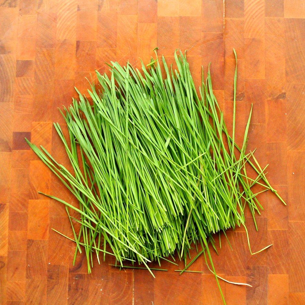 Wheatgrass Juice - Chopped.jpg