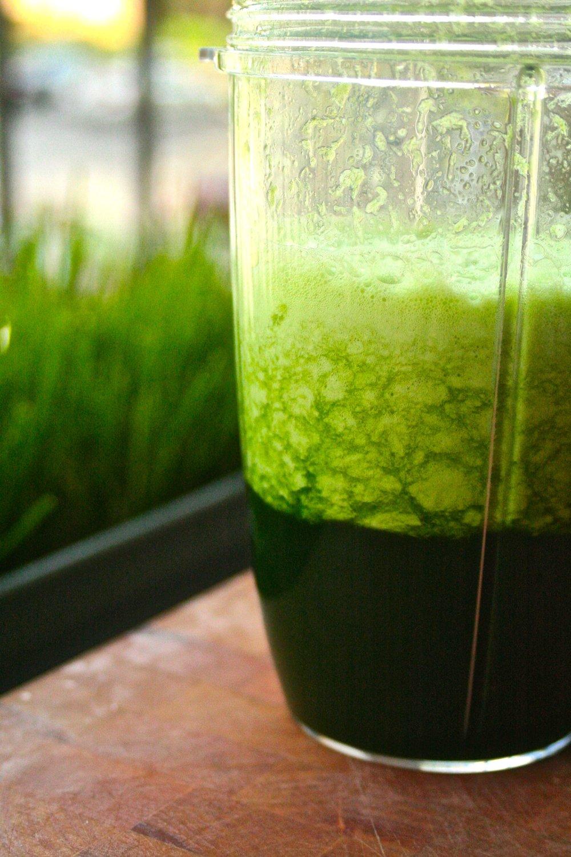 Wheatgrass Juice - Separating.jpg