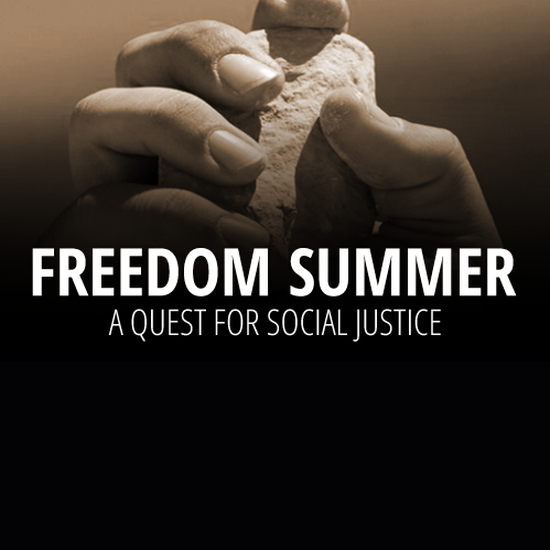 Freedom Summer (2014)