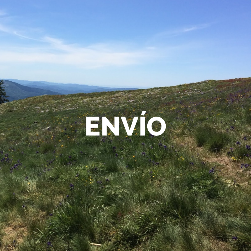 5 ENVIO.png
