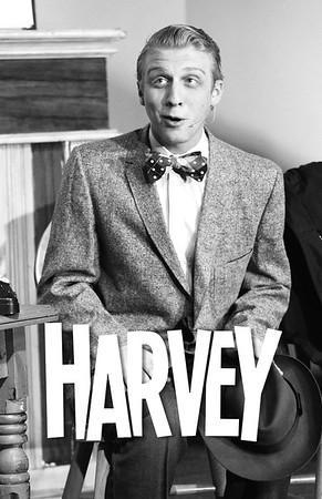 Harvey-M.jpg