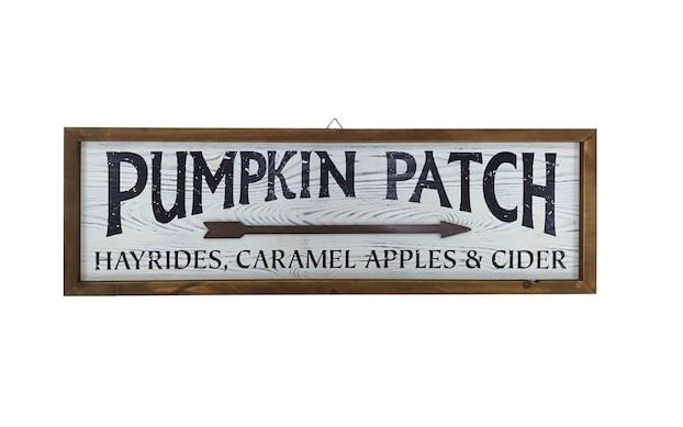 Must Have:Sweet Signage  - I love this Pumpkin Patch sign from Michaels for under $20!