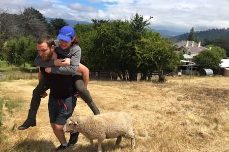Piggy backs with Lolly the sheep. -