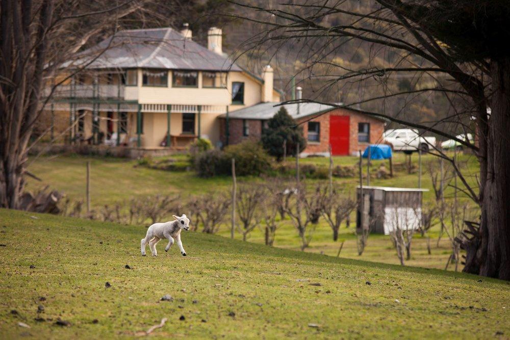 Stanton Farmhouse.jpg
