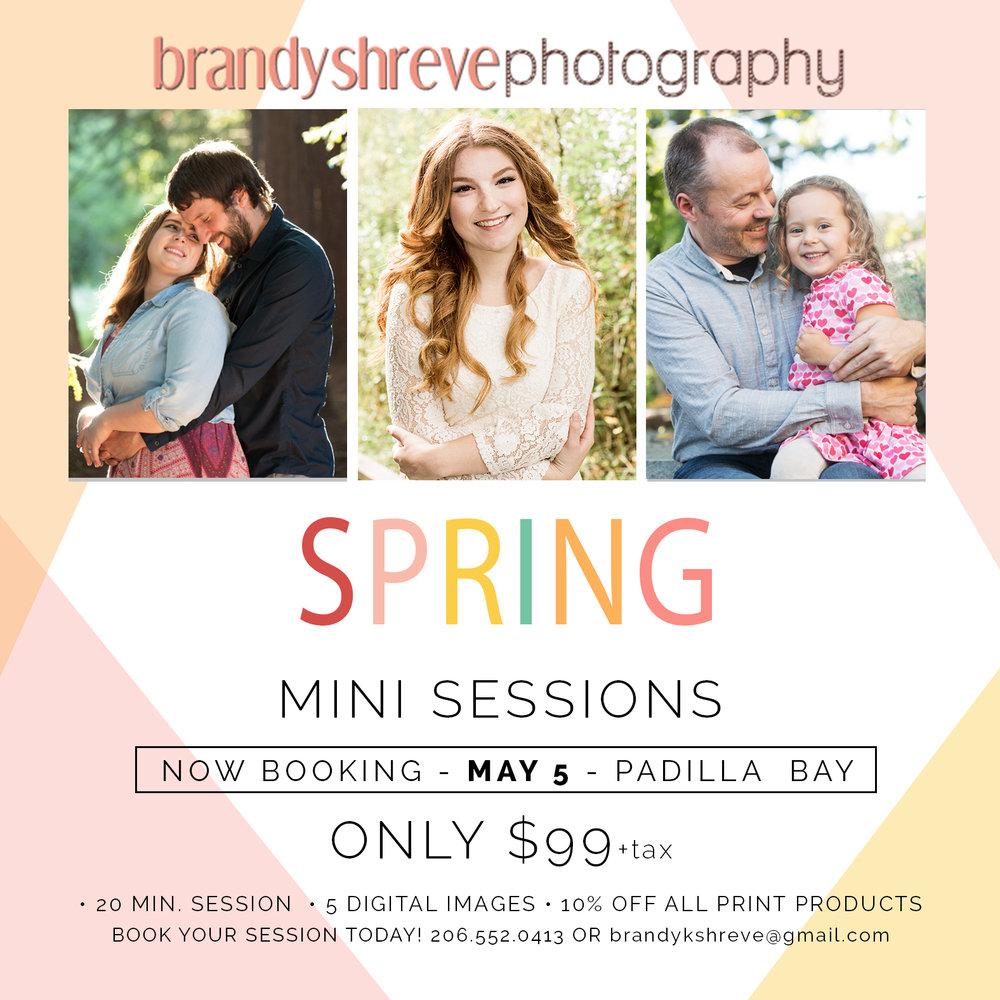 Spring mini sessions.jpg