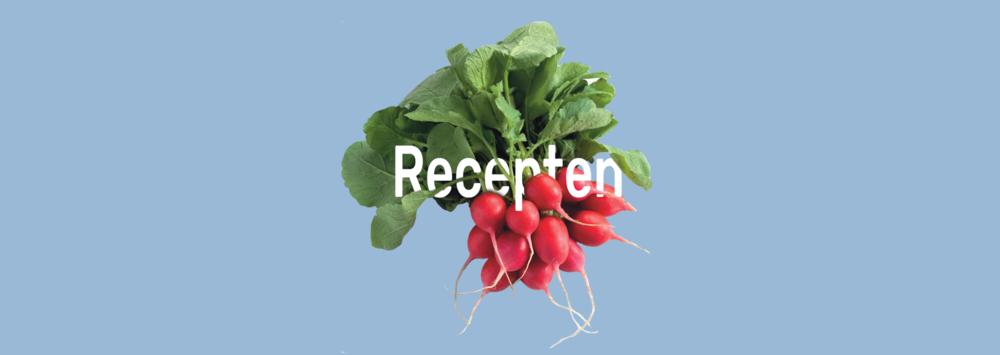Radijs-receptenachtergrond.png