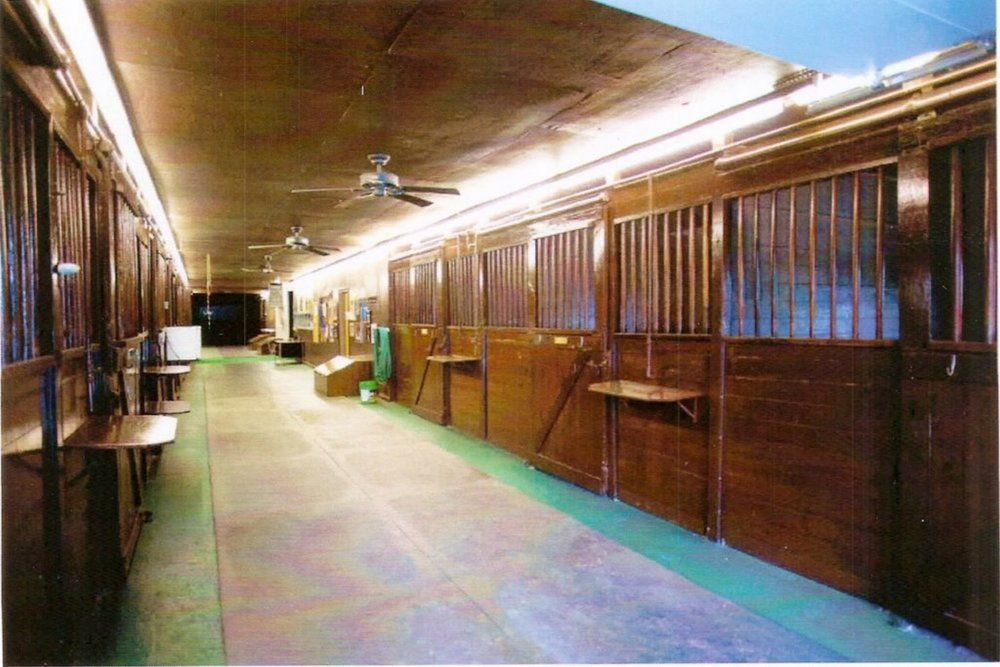 Equine Amenities -