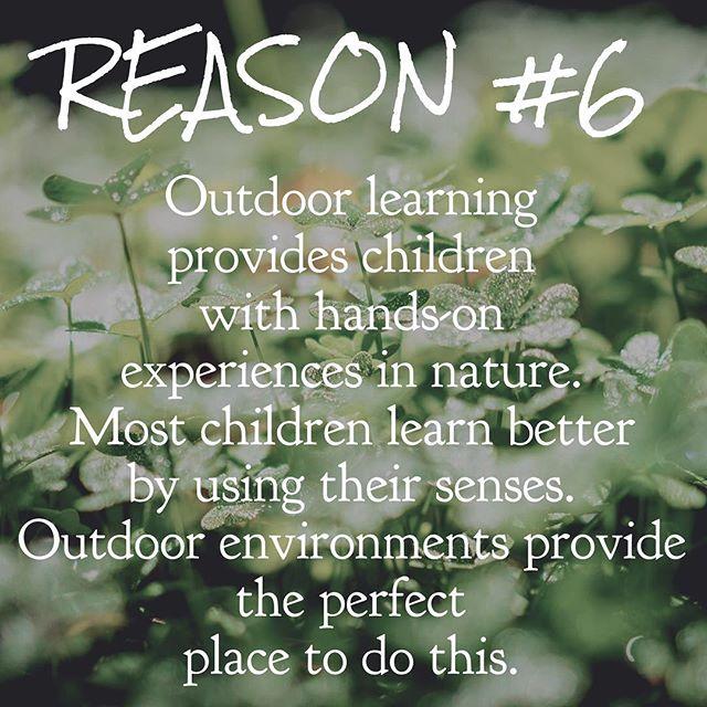 👍🏼✋🏼🌿🍃🌱🌳 #earlychildhoodeducation #outdooreducation #northshorema #forestschool #handsonlearning #5senses #fivesenses #preschool