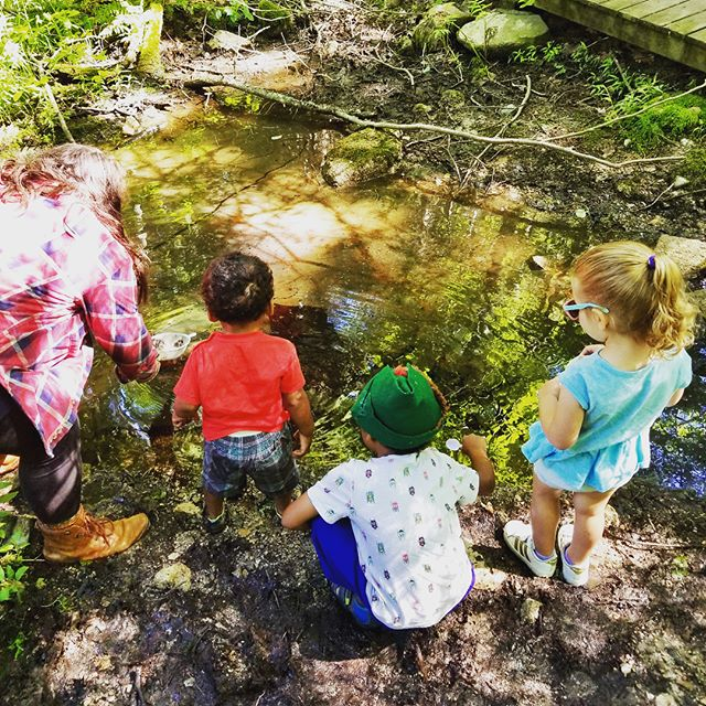 "We had an awesome adventure through the woods on Saturday morning! From exploring a vernal pool (and finding a tiny salamander larva) to climbing the rock ""mountain"" and drawing with chalk along the way! Our group of little acorns had a blast playing in the mud and dirt and discovering all sorts of bugs, plants, trees and rocks 🐜 🌱 🍄 🌳 🔎  #earlychildhoodeducation #northshorema #outdooreducation #forestschool #handsonlearning #experientiallearning #vernalpool @ecgreenbelt"