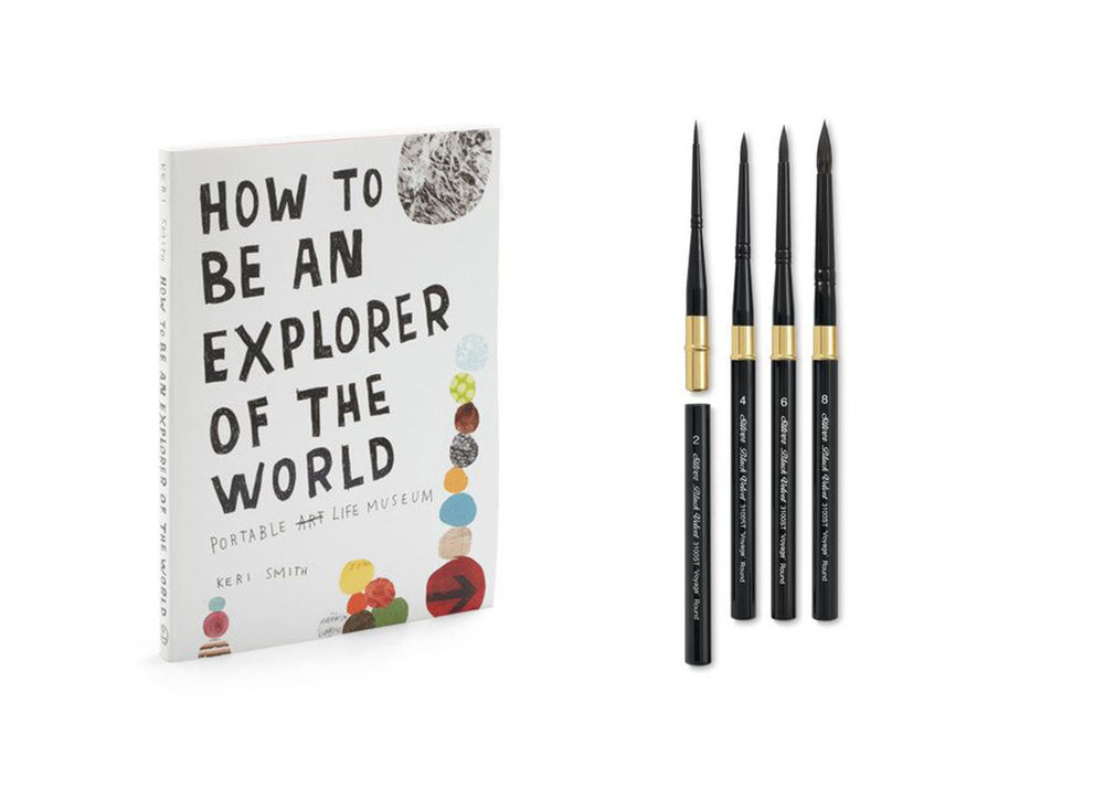 Book  +  Travel Brushes