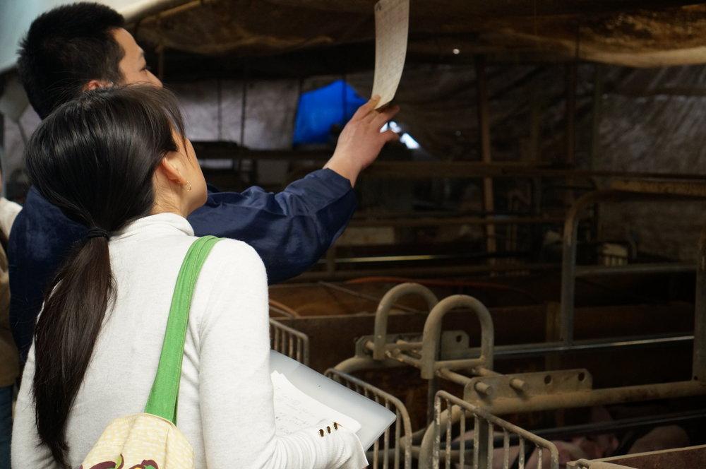 """宮崎県延岡市の""""吉玉畜産""""へ見学へ行った時の様子です"""