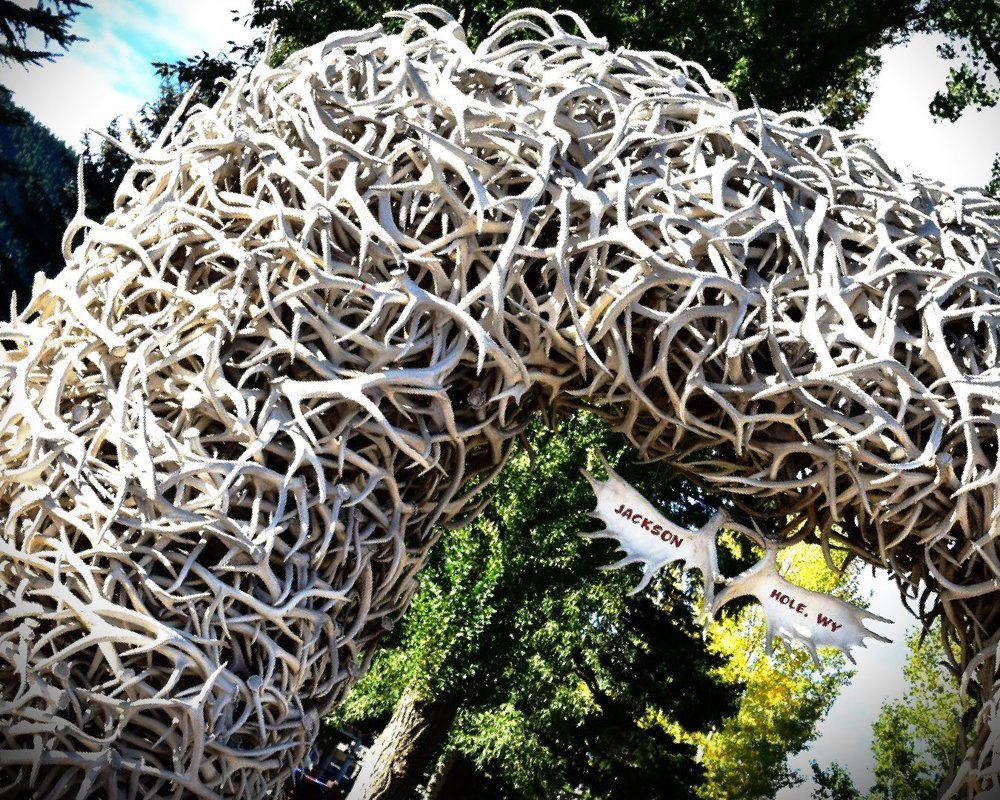 The antler Arch in Jackson Hole, WY