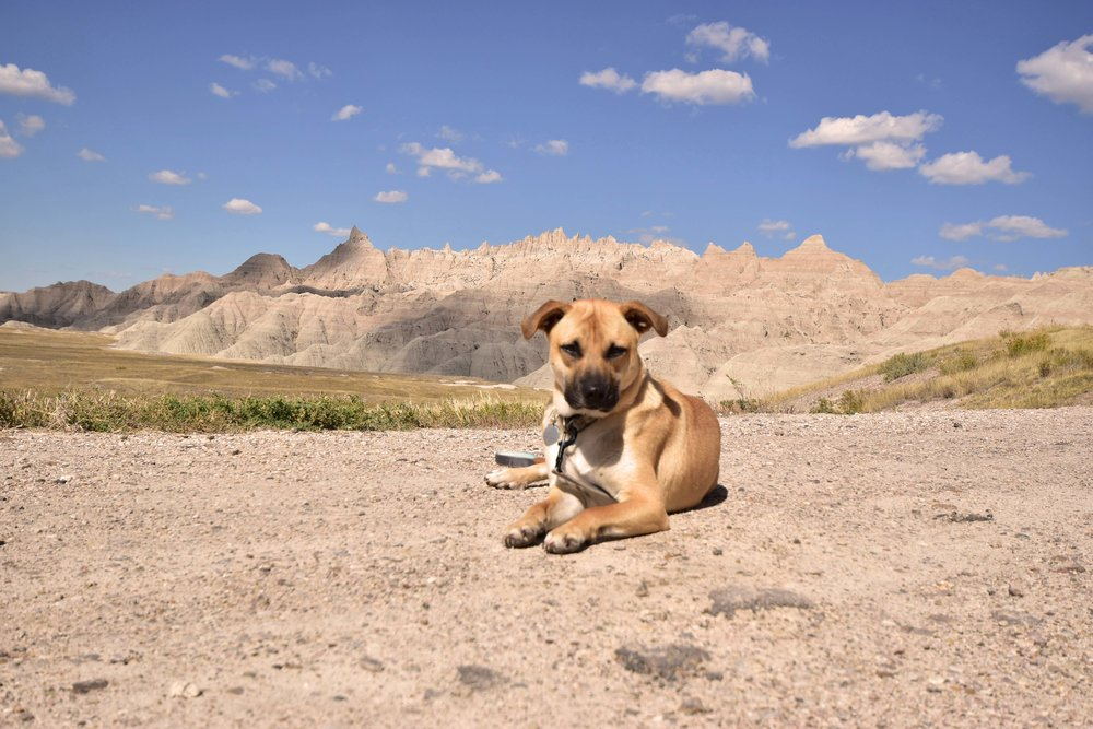 Chance being BA in the Badlands