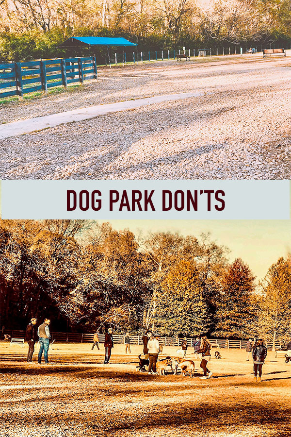 Dog Park Don'ts.jpg