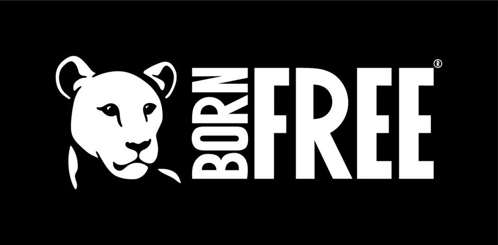 Born-Free-Filled-LAN-CMYK-1024x504.jpg