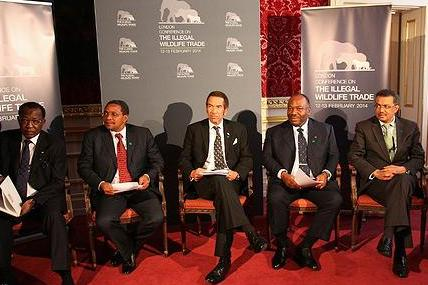 President Déby of Chad, President Kikwete of Tanzania, President Khama of Botswana, President Bongo of Gabon, and Prime Minister Desalegn of Ethiopia.