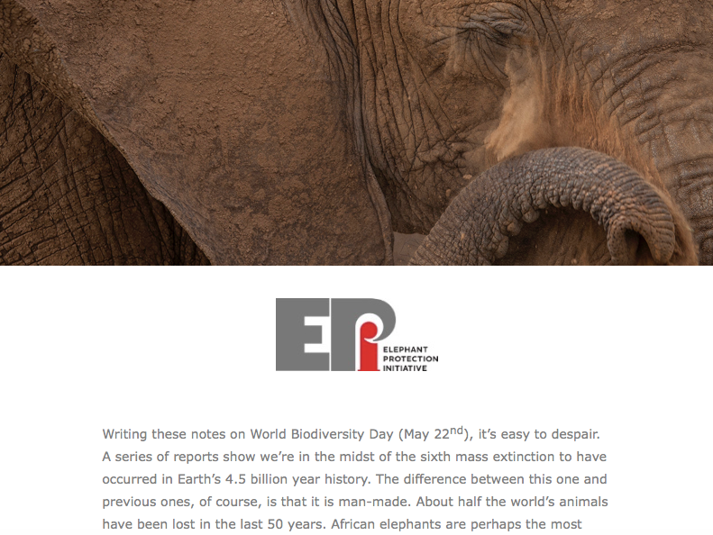 EPI Newsletter: June 2018 - Includes how to fight poaching in Chad, Gabon's long term plan for elephant conservation, and Tanzania reaffirms its commitment to the EPI...