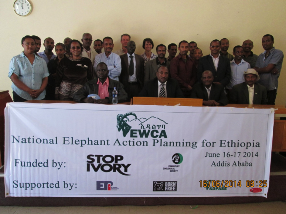 Ethiopia's NEAP Workshop on Addis Ababa- April 2014