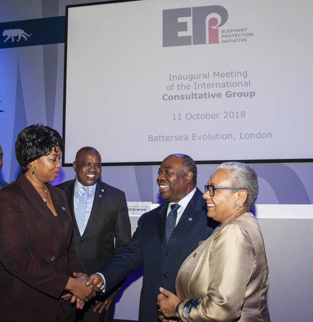 Inaugural meeting of the Consultative Group… - October 2018