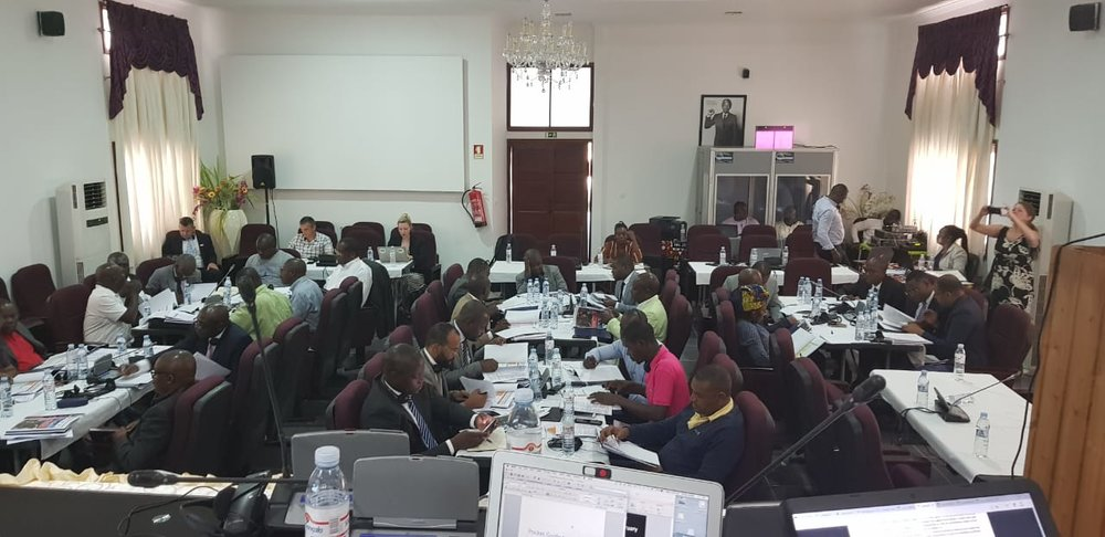 Angola wildlife crime workshop 5.jpeg