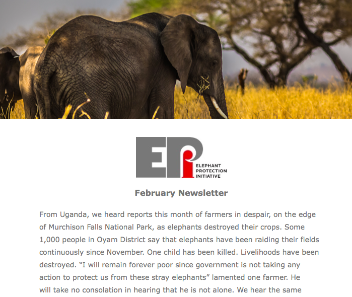 EPI Newsletter: Feb 2019 - We consider the future challenges facing Africa with ever increasing populations and Human Elephant Conflict, and updates from the EPI supported workshop on wildlife crime in Angola, Stockpile Management System training in Tanzania, and NEAP engagement in Ethiopia.