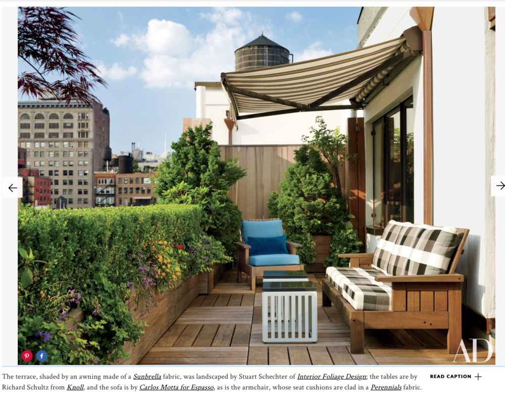 The terrace at Jay McInerney and Anne Hearst's New York penthouse. Photo by Joshua McHugh. Article by Christopher Mason