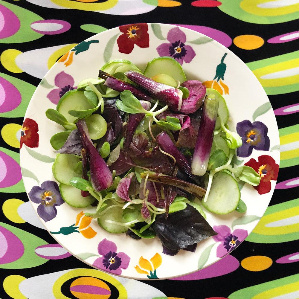 Purple basil, purple scallions, Persian cucumbers, green grapes and sunflower shoots with lemony vinaigrette, on an Emma Bridgewater plate
