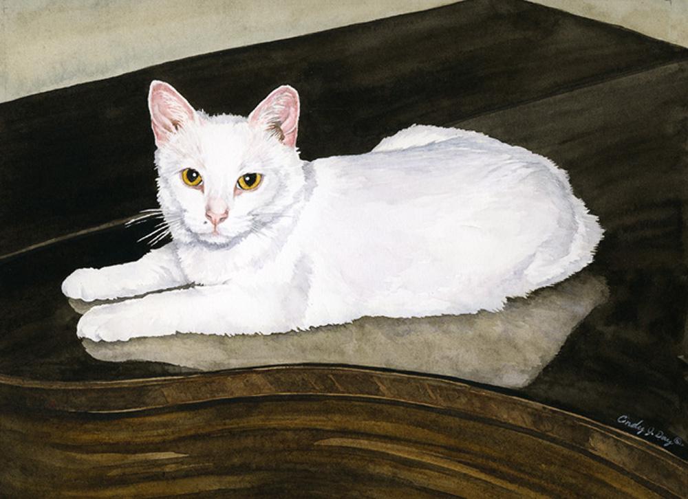 Casper 8 x 10 Watercolor