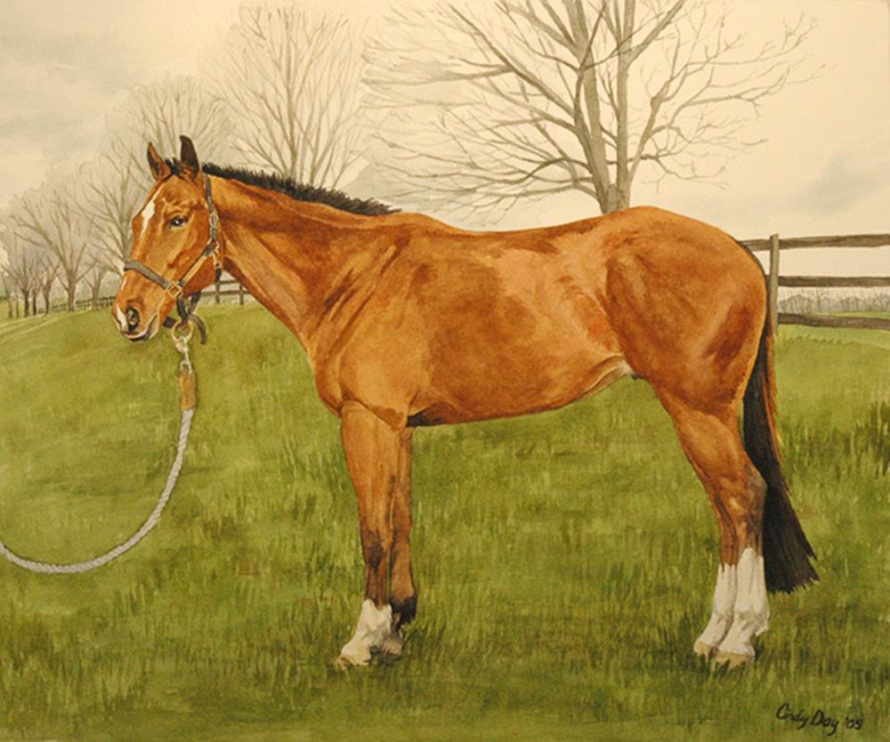 Horse 8 x 10 Watercolor