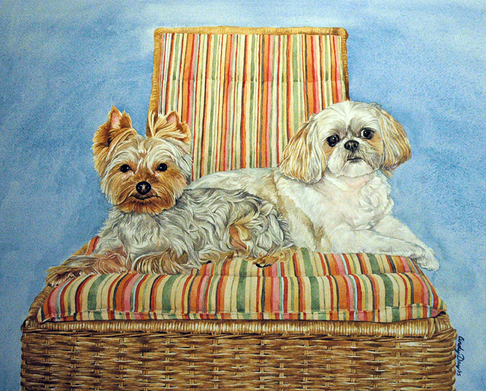 Toby 11 x14 Watercolor