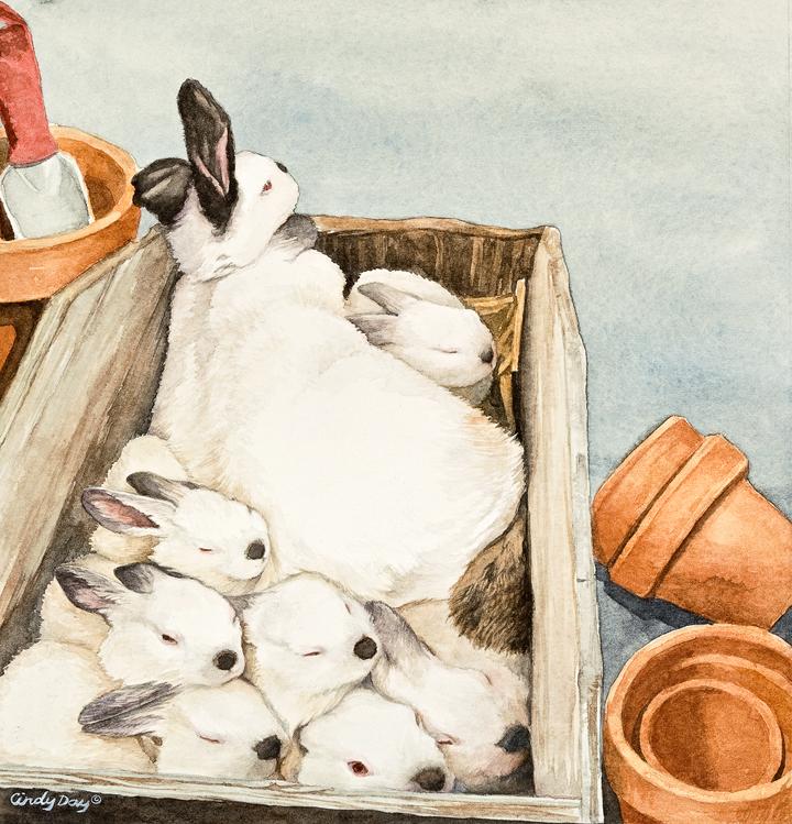 Box O' Bunnies