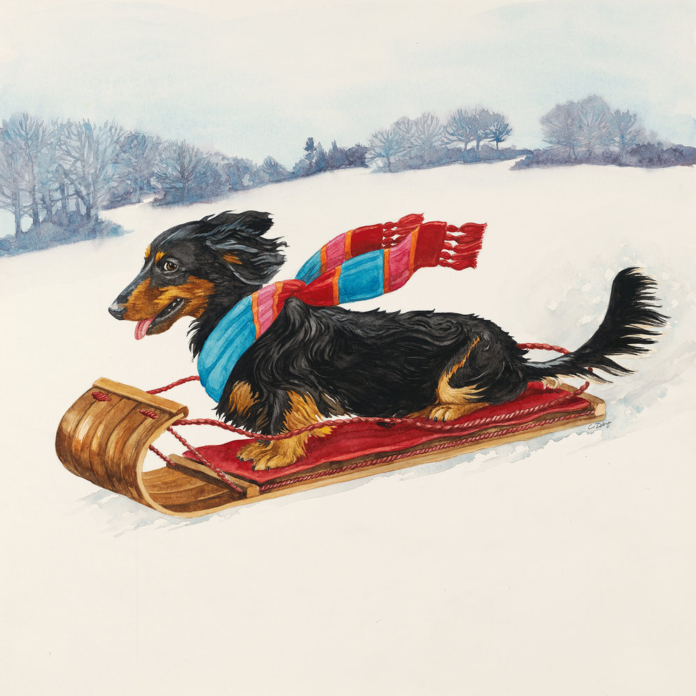 Sled Ride