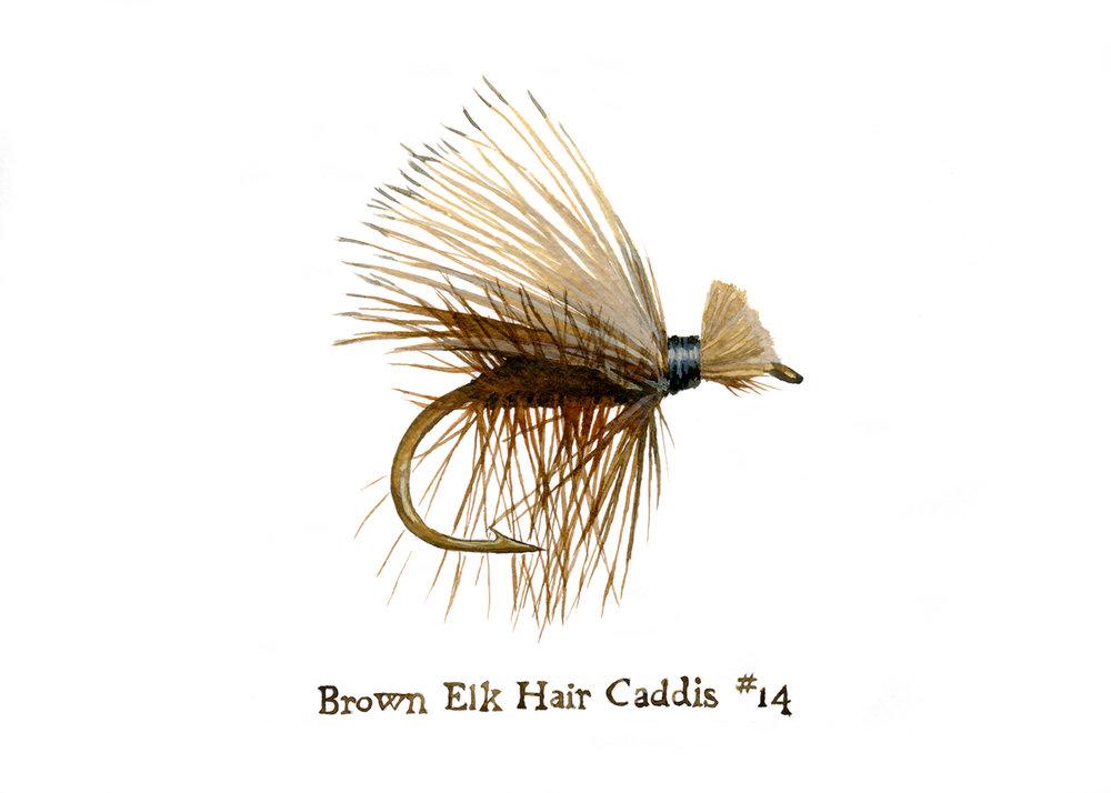 Brown Elk Hair Caddis #14