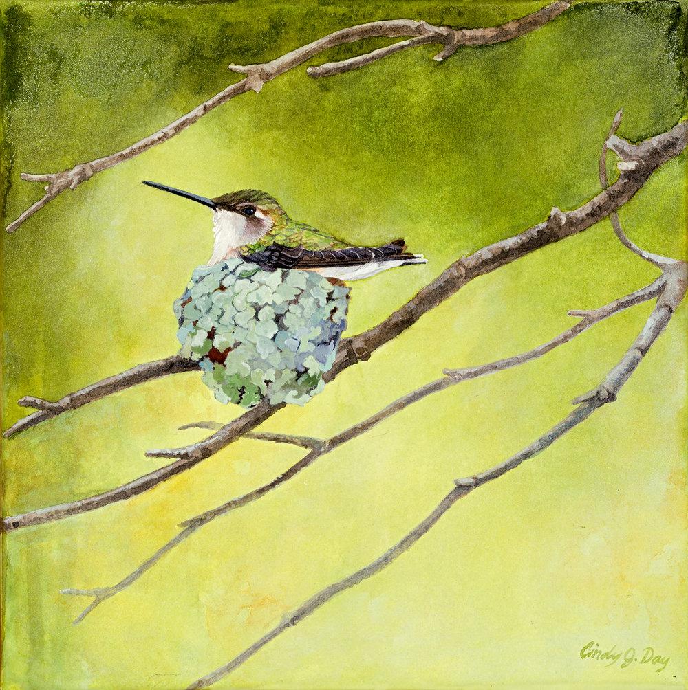 Quiet Nest