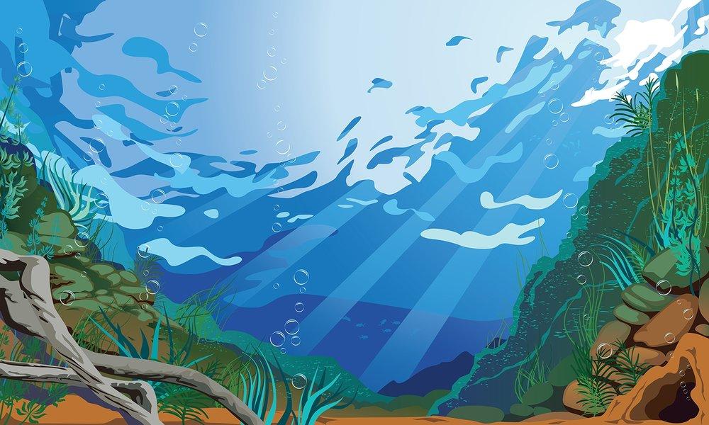Under the Sea illustration