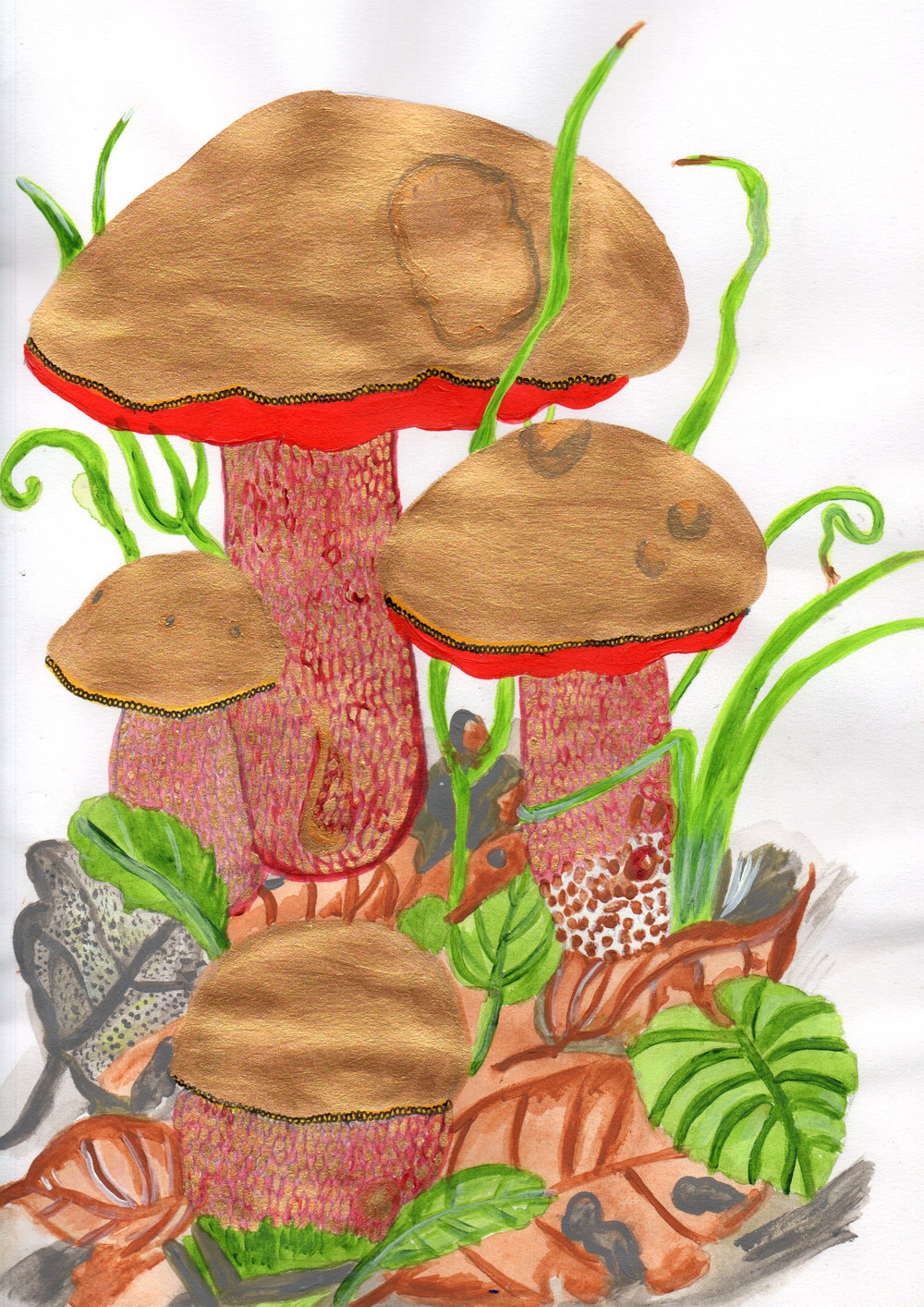 Mushrooms20180520_10570915.jpg
