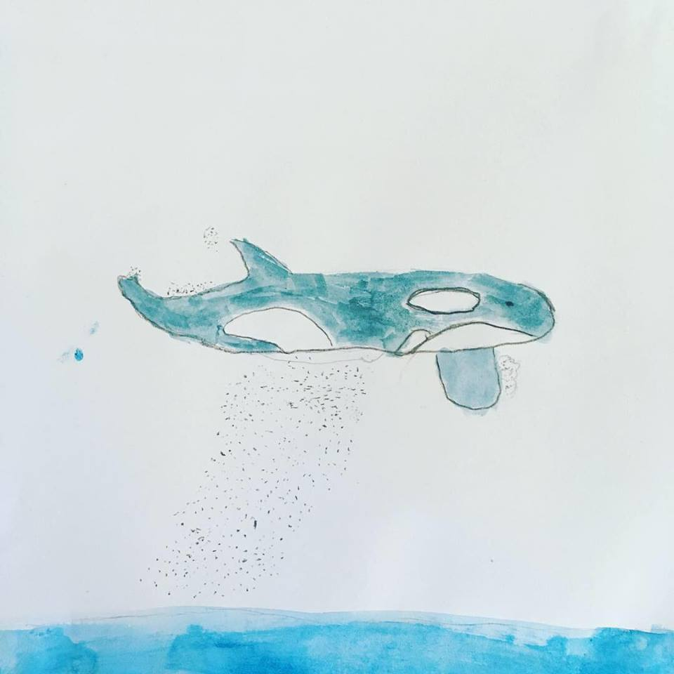 I still can't believe that the little boy who drew this Orca Whale with such care and attention is just six years old!