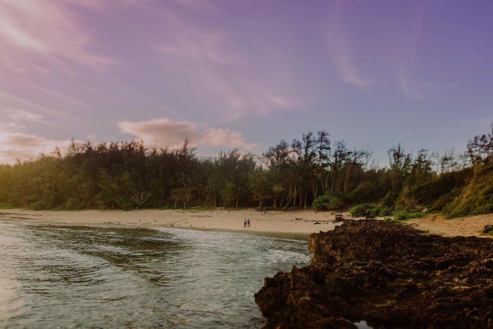 turtle beach -