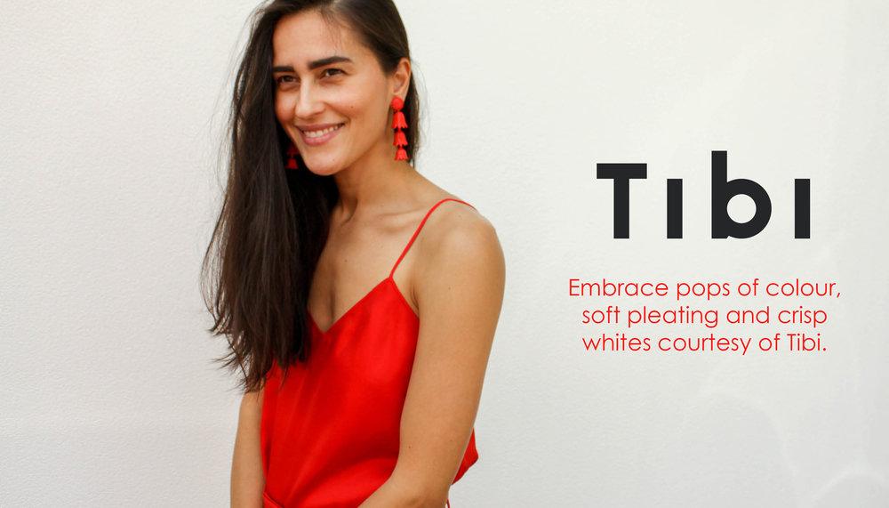 Tibi-Nov18-newsletter-header.jpg