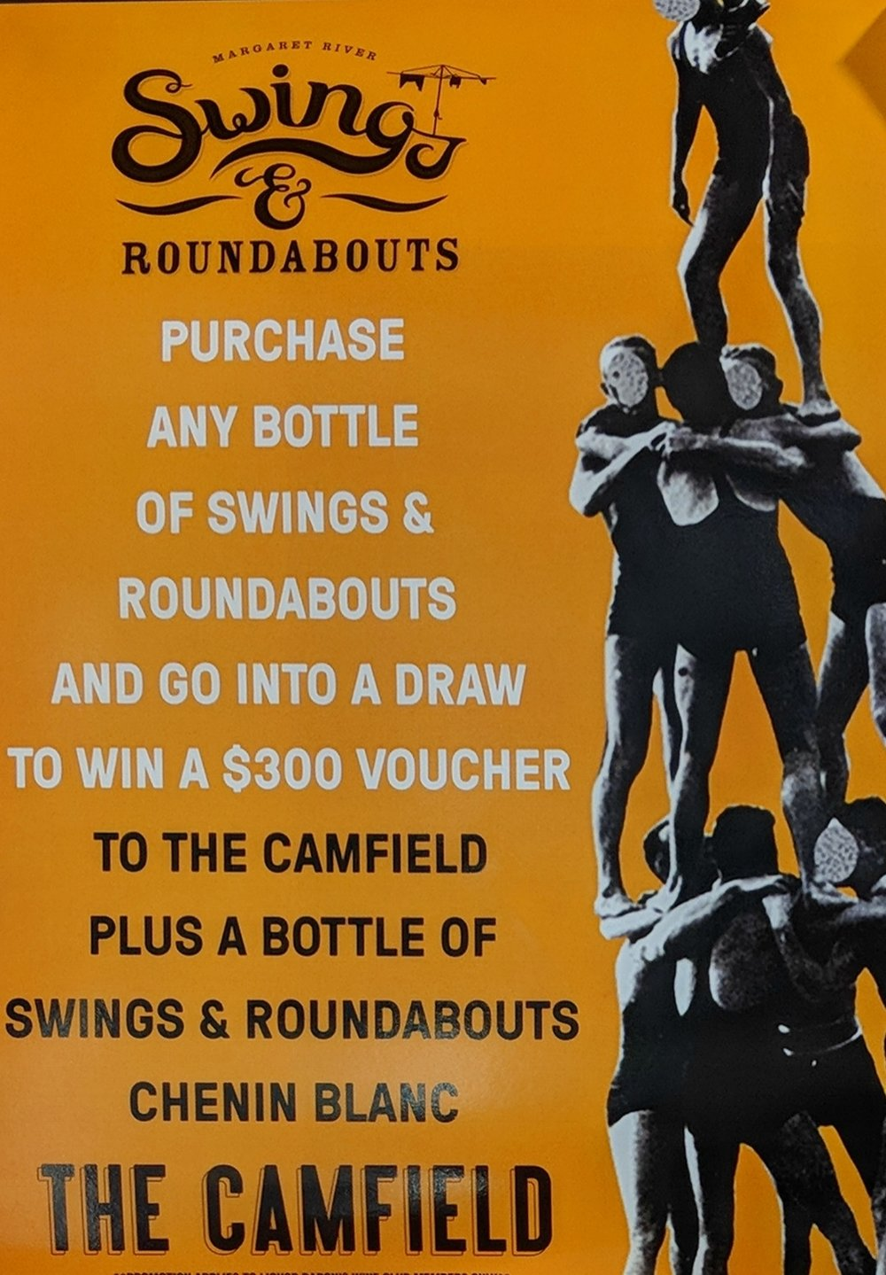 swings and roundabouts camfield comp.jpg