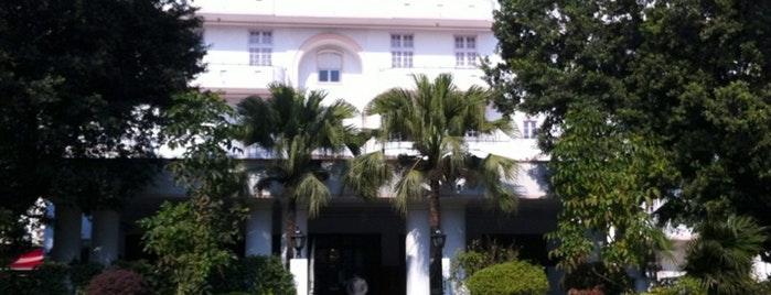 13. Vivanta by Taj - Ambassador