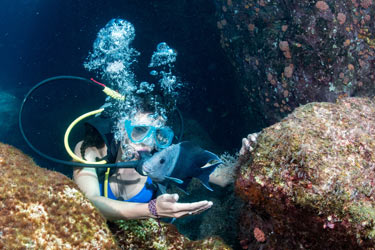Diving-Hikkaduwa.jpg