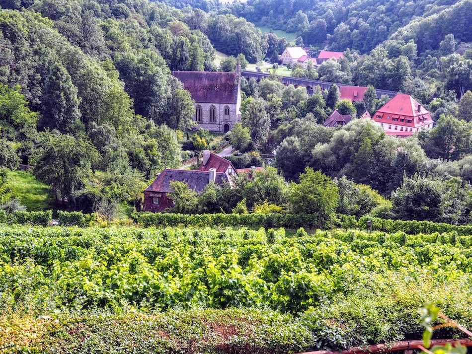 Rothenburg-ob-de-Teuer-Vineyard.jpg