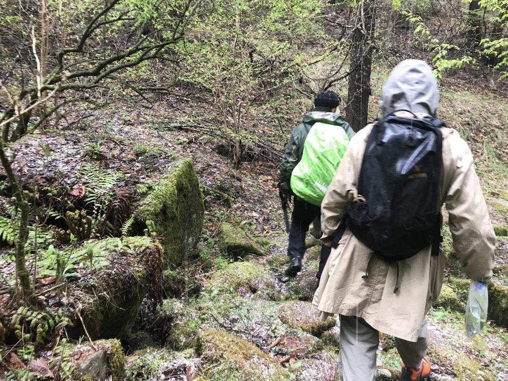 Field Labo - いまだ見たことない植物や嗅いだことのない香りや感覚を求めてEPOの旅は続きます
