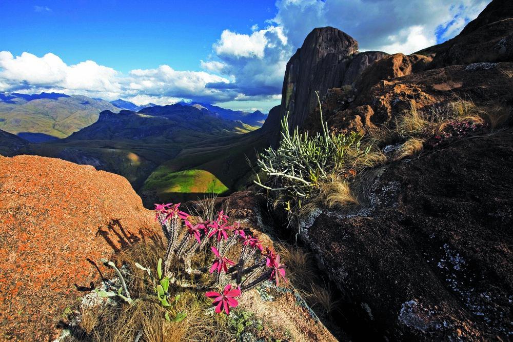 landscapes -