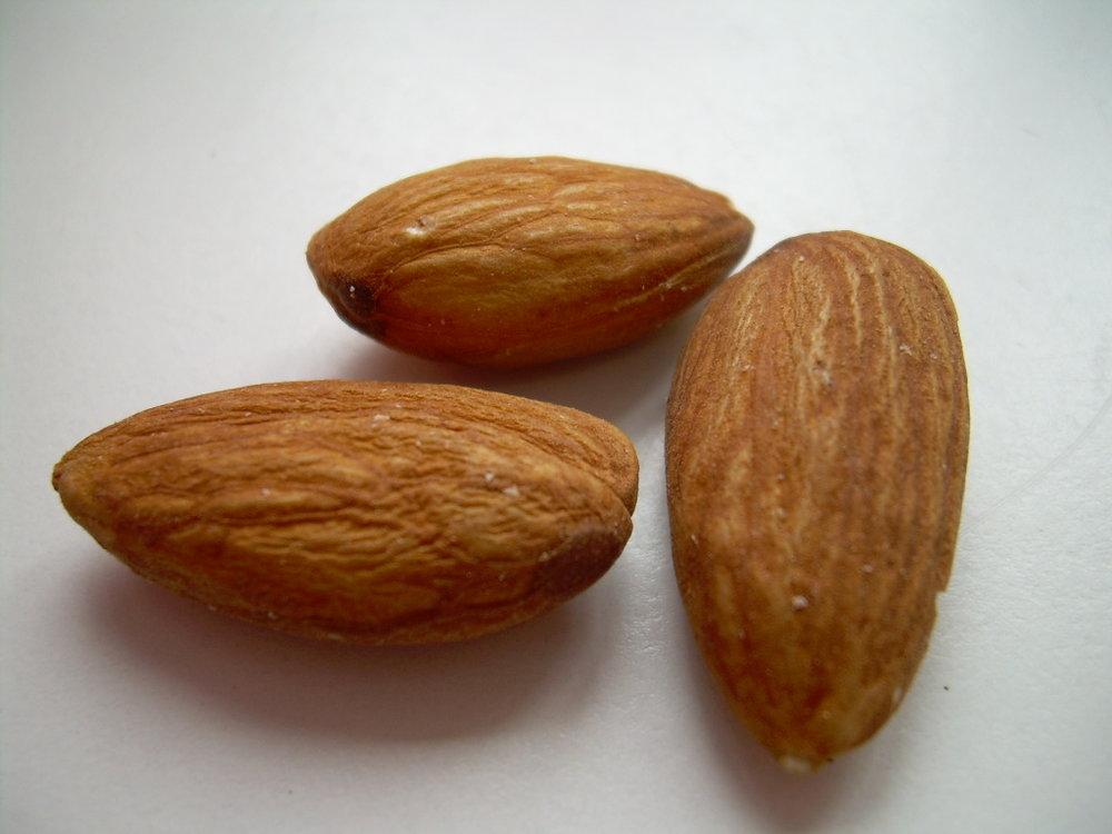 Almonds02.jpg