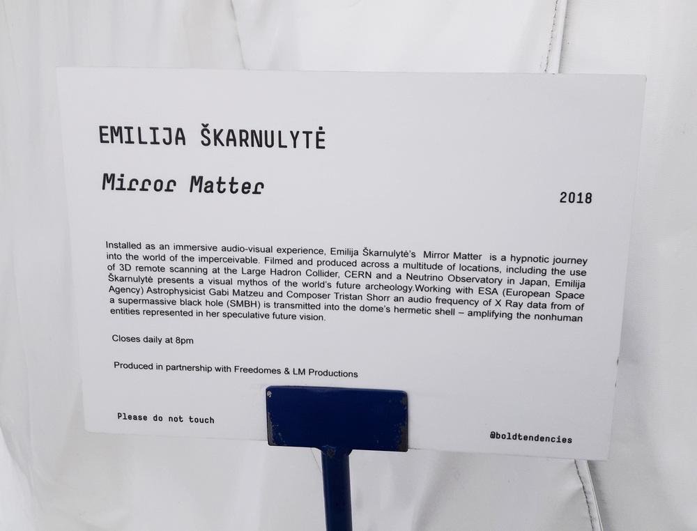 Info card for Emilija Skarnulyte art piece
