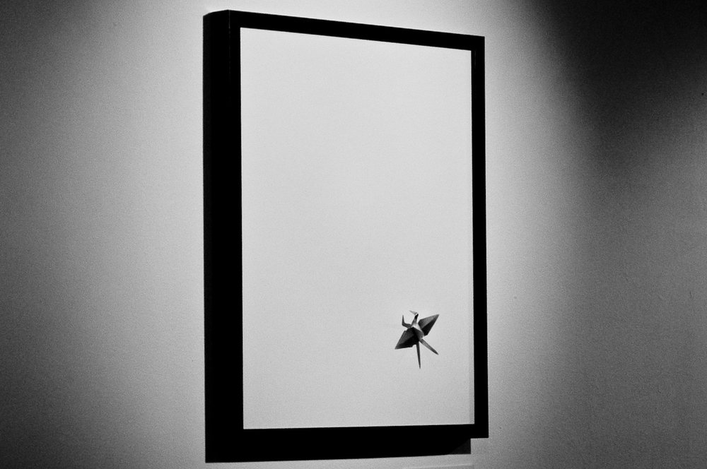 Minimalist framed painting of insect