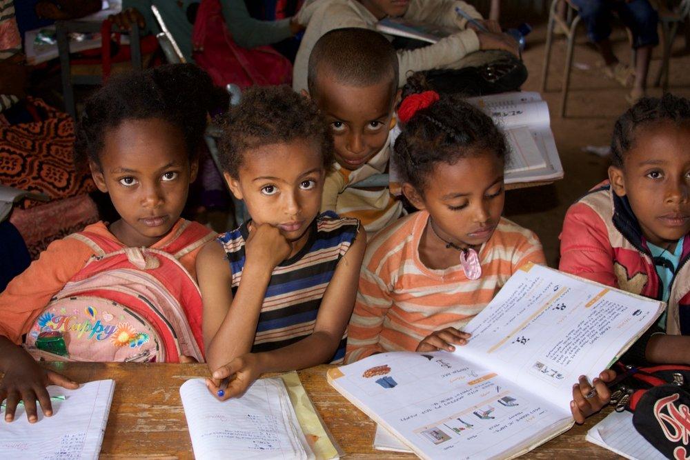 Addis Amba Elementary School